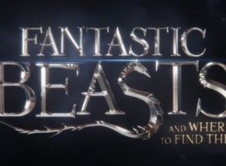 Harry Potter Fans Will Love This: NEWS ON FANTASTIC BEASTS AND WHERE TO FIND THEM